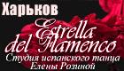 "Студия испанского танца ""Estrella del Flamenco"""